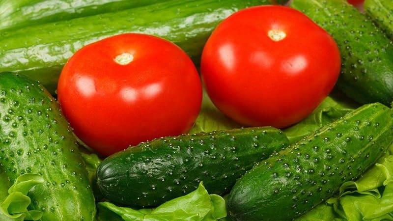 Способы хранения урожая овощей и фруктов